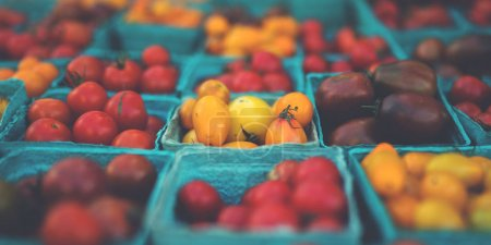 Photo for Pint baskets of organic red tomatoes on the counter at a farmer's market. Fresh produce on sale at the local farmers market. - Royalty Free Image