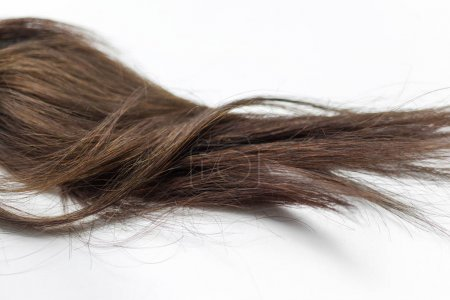 Black Hair Over White background
