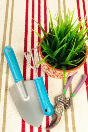 composition of garden tools close up
