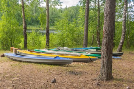 kayaks on the shore of a forest lake on a summer day.
