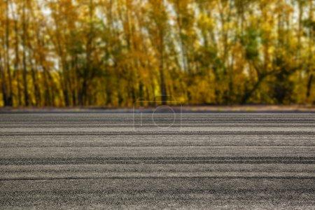 Photo pour Route rurale asphalte vide contre paysage coloré vibrant arbres pendant la saison d'automne. - image libre de droit