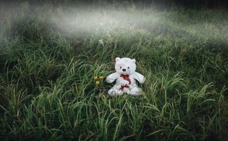 Two white plush toy teddy bears on green grass