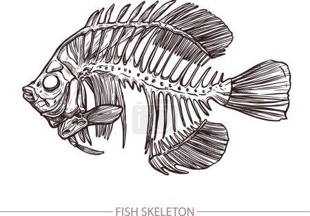 Illustration pour Fish Skeleton. Style croquis dessiné à la main. Affiche Mode Imprimé Et Hipster - image libre de droit