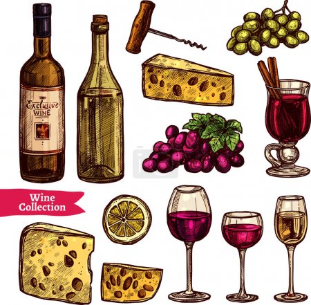 Hand Drawn Wine Set