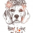 Portrait Of Beagle Dog With Flower Floral Wreath. ...