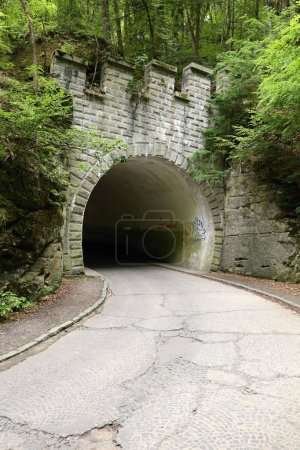 Old road tunnel with castle bastion