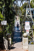 SAN DIEGO, CALIFORNIA - APRIL 28, 2017:  A man walks on the Spruce Street Suspension Bridge, built in 1912 by the City of San Diego and designed by Edwin Capps.  It is 375 feet long and 70 feet high.