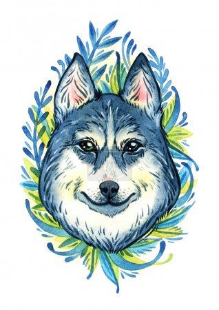 watercolor husky portrait