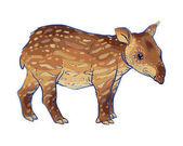 Hand drawn tapir
