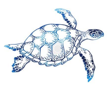 Hand drawn turtle