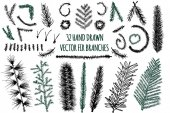 Set of 32 Hand Drawn Fir Branches Christmas Tree Vector elements isolated on white background
