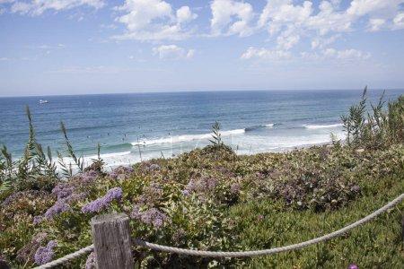 Photo pour Vues côtières et la scène par les falaises et la plage à Del Mar, San Diego, Californie - image libre de droit
