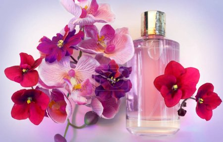 bottle of women's perfume on a pink background