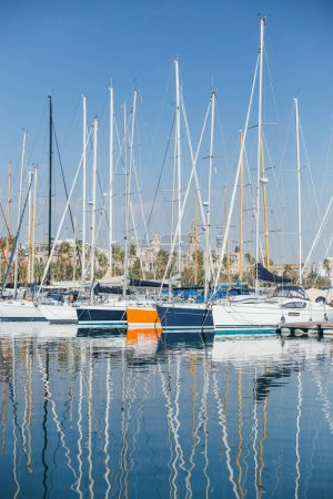 yachts and sailboats parked in marine port