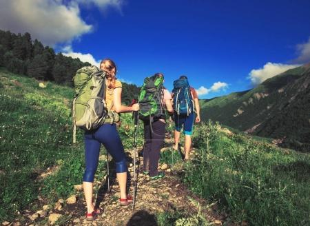 Hiking in beautiful mountains. Group of hikers enjoy the weather
