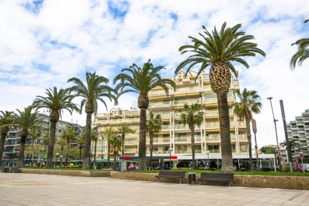 Coastline Costa Dorada, Salou, Spain. Beautiful sea and palms