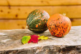 harvesting, fall, halloween concept. on the table made of solid tree trunk there are two small ripe pumpkins of bright orange and green colours nearby with leaves of autumn shades