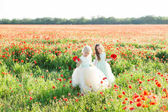 little girl model, childhood, fashion, summer concept - walk of two young beautiful sisters in white and blue holiday dresses on a field of poppy, in hand of each girl bouquet of flowering poppies.