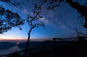 Mae Ping river view point. Silhouette tree with the milky way and mountain lake on background before sunrise.