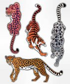 Set of wild Cat designs Classic flash tattoo style patches or elements Traditional stickers comic pins Pop art items Vector collection stikers kit Tiger Panther Snow Leopard Cheetah