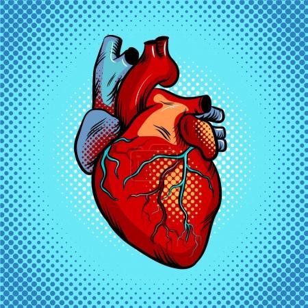 Illustration pour Cœur humain pop art illustration vectorielle rétro. imitation de style BD . - image libre de droit