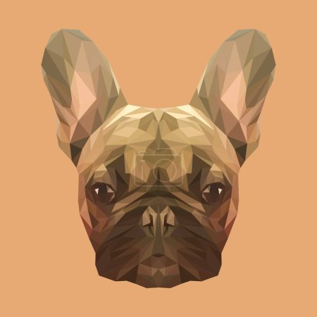 Illustration for French bulldog low poly design. Triangle vector illustration - Royalty Free Image