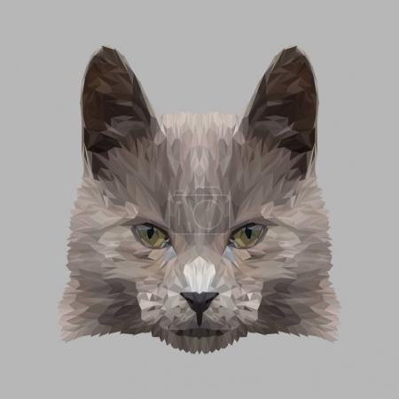 Cat low poly design.