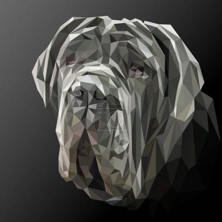 Illustration for Mastiff dog animal low poly design. Triangle vector illustration. - Royalty Free Image