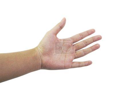 Photo pour Image de collection de main est sur un fond blanc . - image libre de droit
