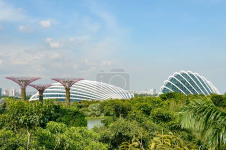 Singapore Supertrees buildings