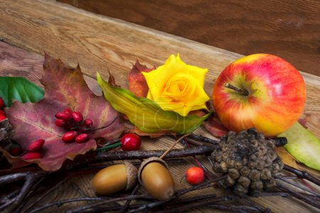 Thanksgiving background with barberry, maple leaves and yellow r