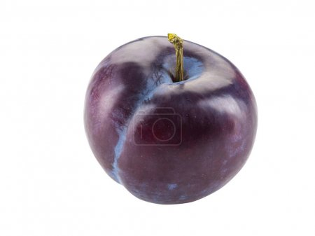 Photo for Yummy, mellow, purple plum fruit isolated on white background with copy space for text or images. Clipping path. Side view. Close-up shot. - Royalty Free Image