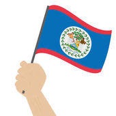 Hand holding and raising the national flag of Belize
