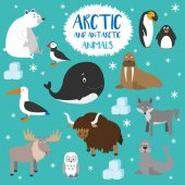Vector illustration set of Arctic and Antarctic animals