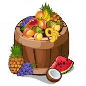 Full barrel with mouth-watering tropical fruits scattered Vector illustration isolated in cartoon style