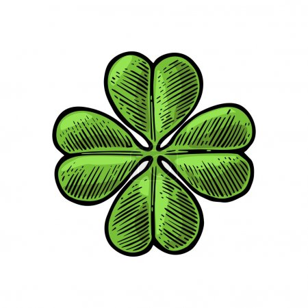 Illustration for Good luck four leaf clover. Vintage color vector engraving illustration for info graphic, poster, web. Isolated on white background. - Royalty Free Image