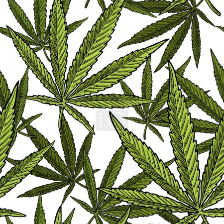 Illustration for Seamless pattern with marijuana leaf. Hand drawn design element. Vintage color vector engraving illustration for label, poster, web. Isolated on white background - Royalty Free Image