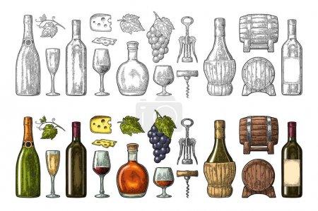 Illustration pour Set boissons à base de raisin. Vin, brandy, bouteille de champagne, verre, tonneau, fromage, tonneau, bouquet de raisins avec des baies et des feuilles. Illustration vectorielle de gravure couleur vintage isolée sur fond blanc - image libre de droit