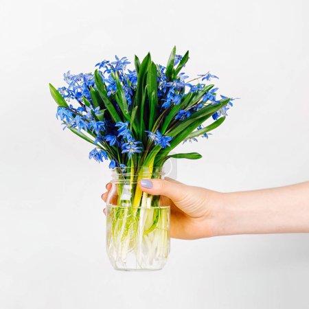 femme main tient un pot de fleurs