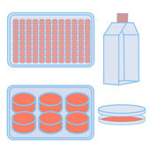 flask and plates for cell cultivating
