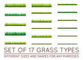 17 Backgrounds Of Green Grass Isolated On White Background Vector Illustration
