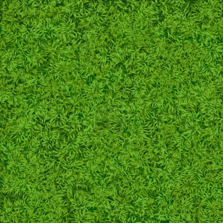 Natural realistic green grass texture background. Soccer grass top template.
