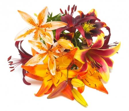 Beautiful bouquet of yellow lilies and red