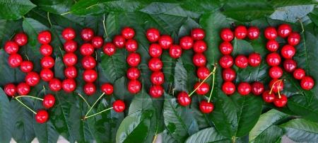 Cherry on leaves with text Summer. Creative concept of fruit
