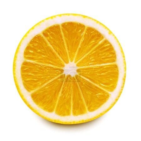 Half lemon fruit isolated on white background. Creative food and