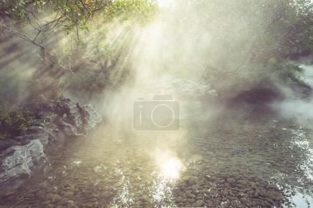 Photo pour Rayons du soleil brille à travers les arbres sur la surface de l'eau par un matin brumeux . - image libre de droit