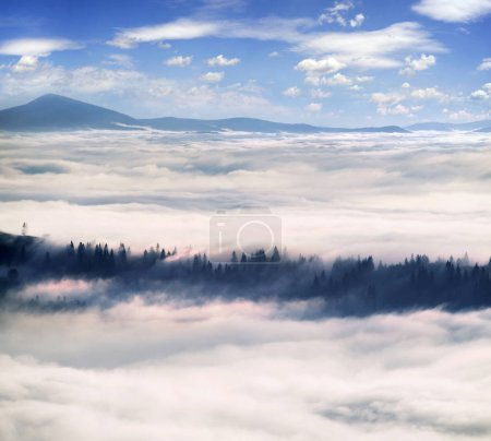 Sea fog on a mountain valley in the Carpathians
