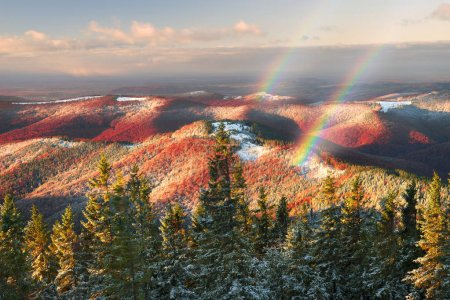 Cold autumn in Precarpathians