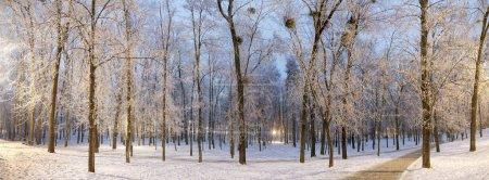 Night Park in Kiev Polytechnic Institute