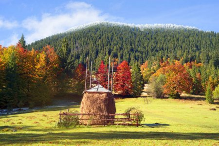 Haystack in autumn season